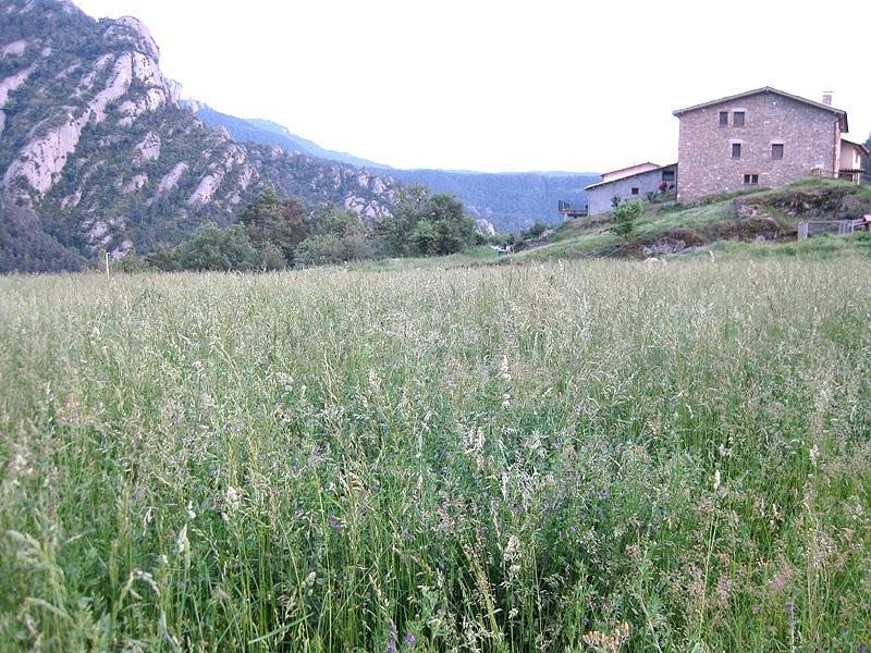 Turismo rural en Casa Vilasaló