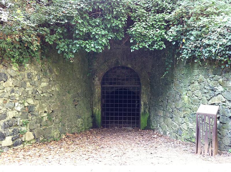 Entrada de la Mina Grott