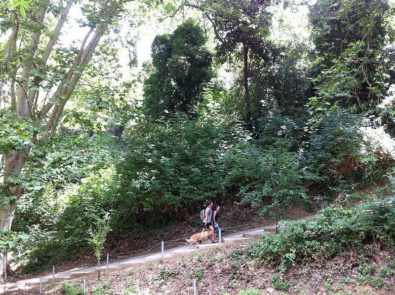 Último tramo de escaleras antes de llegar al pantano