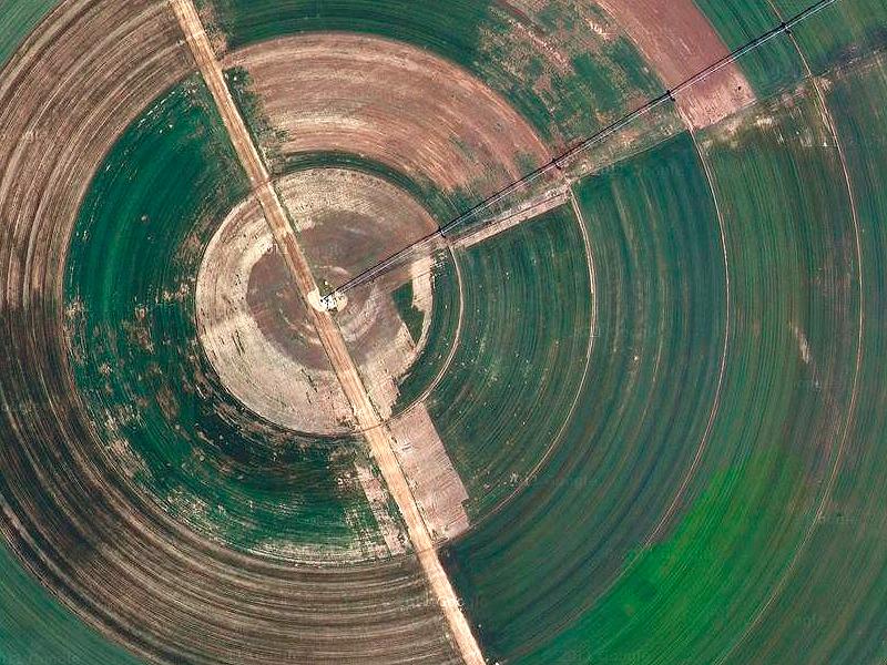 Cultivos radiales dentro del Parc Natural del Delta de l'Ebre