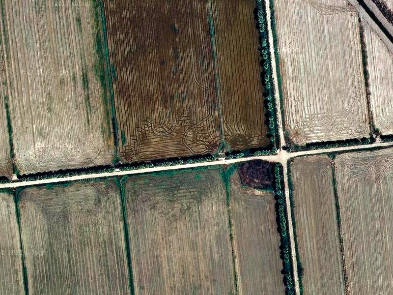 Campos de cultivo cerca de la Bassa de l'Estrella