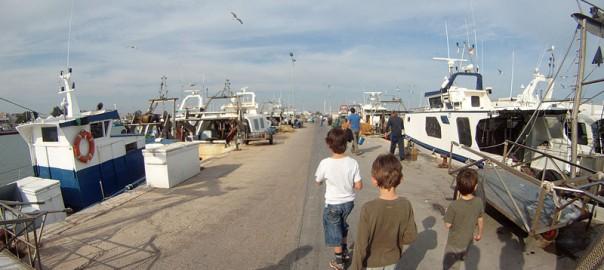 Paseando con los niños por el puerto