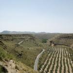 Valle en Gorafe