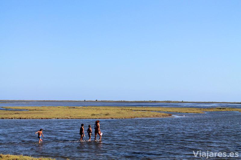 Explorando la Punta de la Banya, Delta del Ebro