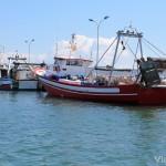 Barcos de pesca amarrados en La Ràpita