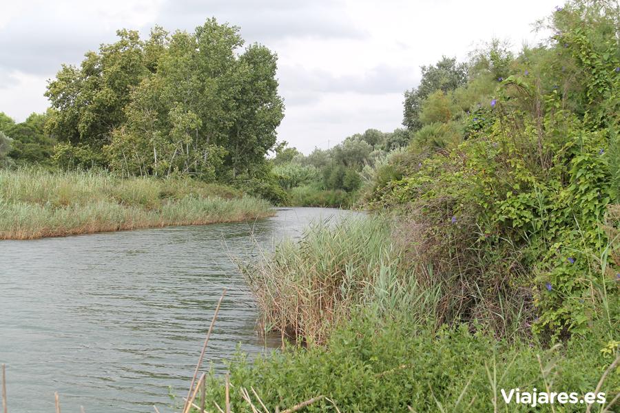 El tramo final del río Sénia es el refugio de muchas especies animales