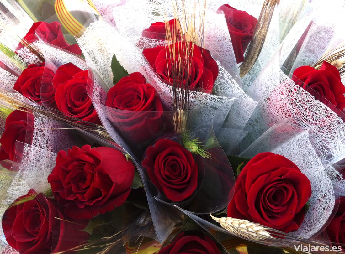 Rosas para regalar a las personas estimadas en la Diada de Sant Jordi