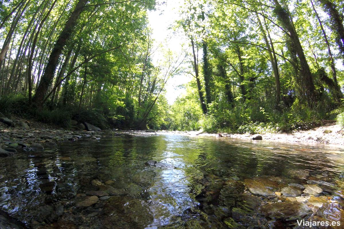 Las aguas cristalinas del río Tordera
