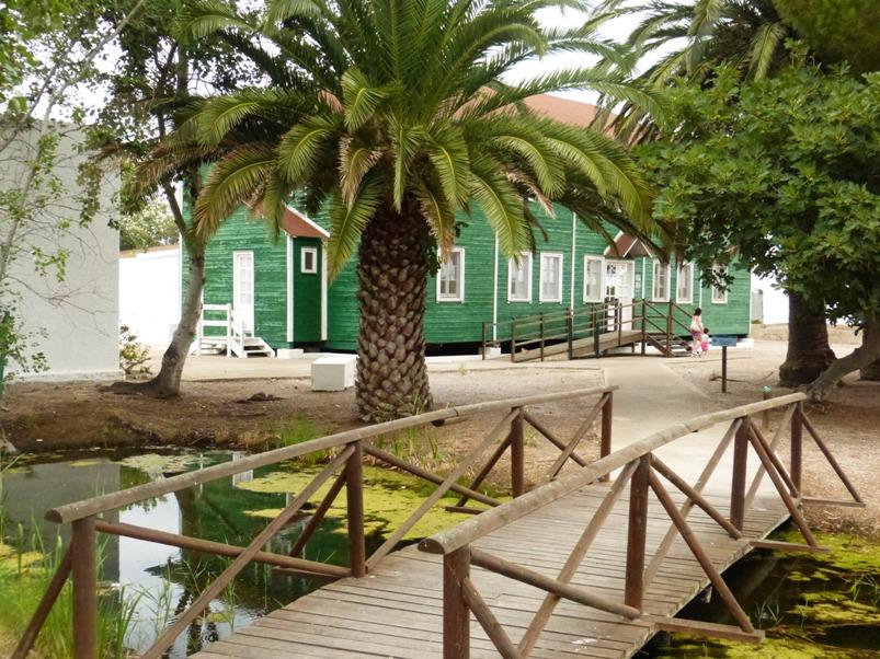 Casa de Fusta en el Parc Natural del Delta de l'Ebre