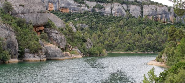 Pantano de Margalef