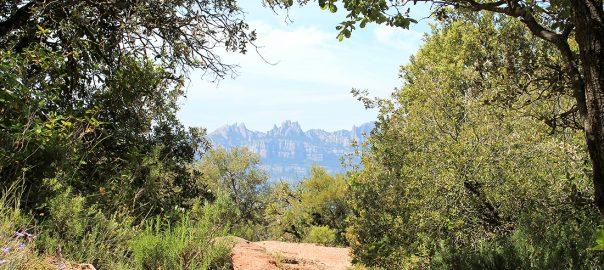 La silueta de Montserrat entre los senderos
