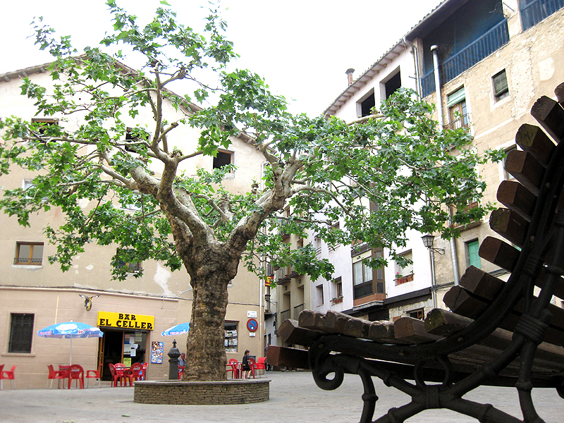 Plaza Mayor en Sant Llorenç de Morunys