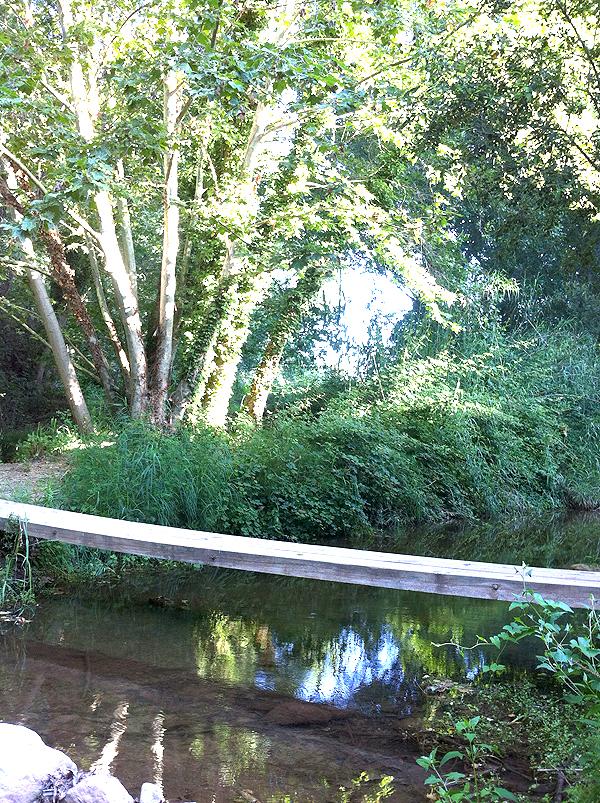 Emoción y aventura: cruzar el río Tenes